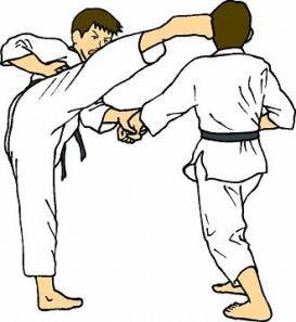 47905-karate-kick-to-the-face