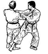 karate-full