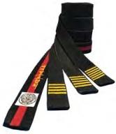 Ko Dan Ja Belts.jpg